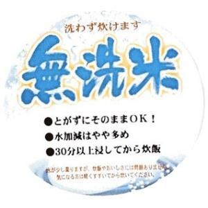 無洗米 お米  10kg (5kg×2袋) 彩のきずな 米 白米  あすつく 埼玉県産 30年産|rc-kaneko|05