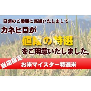 無洗米 お米  10kg (5kg×2袋) 彩のきずな 米 白米  あすつく 埼玉県産 30年産|rc-kaneko|08