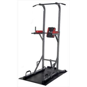 トータルフィットネス Total Fitness ボディケア 懸垂マシンIII STM056