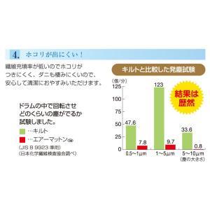 エアーマットン30 高反発 マットレス 敷布団 シングル 日本製 軽量 ファインエアー 体圧分散 マット 国産 オーシン|rcmdhl|05