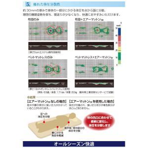 エアーマットン30 高反発 マットレス 敷布団 シングル 日本製 軽量 ファインエアー 体圧分散 マット 国産 オーシン|rcmdhl|06