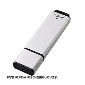 USB2.0メモリ1Gシルバー