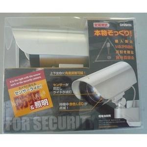 DAISHIN 大進 カメラに見えるセンサーライト DLB-K500 LED白色|rcmdhl