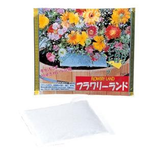 アーネスト フラワリーランド 1パック 花の種 ブレンド ミックス 30種類 園芸 ガーデニング 簡単 鉢植え 地植え 代引不可 メール便(ゆうパケット)|rcmdhl