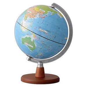 レイメイ藤井 地球儀 先生おすすめ小学生の地球儀 20cm OYV11 JANコード:4902562...