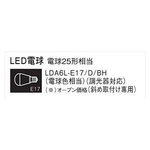Panasonic パナソニック ランプ LDA6LE17DBH