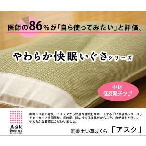 医師との共同開発 い草枕 『アスク 低い 低反発枕 箱付』 約50×30×7〜9cm(中材:低反発ウレタンチップ) 代引不可|rcmdin