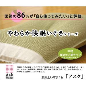 医師との共同開発  『アスク 低い PE枕 箱付』 約50×30×7〜9cm (中材:ポリエチレンパイプ+い草チップ) 代引不可|rcmdin