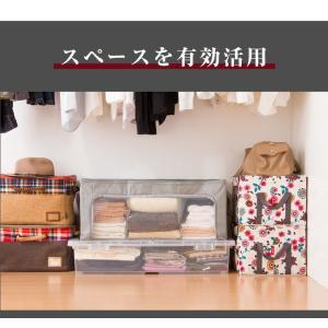 竹炭収納袋 衣類収納ケース 折りたたみ クローゼット収納 収納BOX 収納ボックス 収納用品 隙間収納 炭入り消臭|rcmdin|09