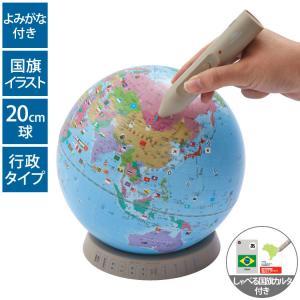 レイメイ藤井 行政タイプ地球儀 OYV17