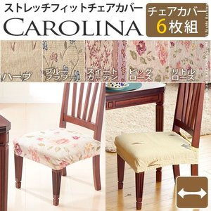 スペイン製ストレッチフィットチェアカバー CAROLINA カロリーナ 6枚組セット 椅子 カバー フィット ストレッチ|rcmdin