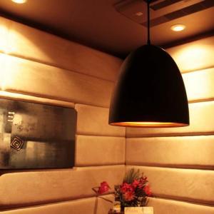 【日本製】 ペンダントライト 1灯 照明 ライト LED対応 モダン リビング   シーリングライト  電球別売 代引不可 rcmdse