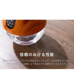 ソウイジャパン  アロマ空気清浄機 バイオナースボール DX 大容量 抗菌消臭付|rcmdse|14