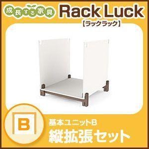 Rack Luck ラックラック 基本ユニットBラック シェルフ 棚 収納 組み立て 壁面 RL-01B|rcmdse