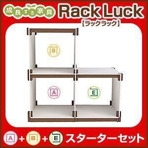 Rack Luck ラックラック スターターセット A+B+Eラック シェルフ 棚 収納 組み立て 壁面 RL-S3S rcmdse