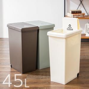 スライドペール 45L ふた付き 幅27cm 45リットル ごみ箱 ダストボックス キッチン スリム コンパクト プラスチック 角型 縦型 代引不可 rcmdse