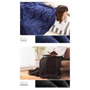 毛布 マイクロファイバー毛布 1枚物 ダブル 2枚セット ひざ掛け ふわふわ あったか 掛け布団 掛布団 洗える ウォッシャブル 保温|rcmdse|05
