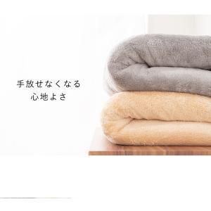 毛布 マイクロファイバー毛布 1枚物 ダブル 2枚セット ひざ掛け ふわふわ あったか 掛け布団 掛布団 洗える ウォッシャブル 保温|rcmdse|10