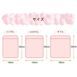 2枚合わせ毛布 中綿入り ダブル マイクロファイバー 毛布 布団|rcmdse|05