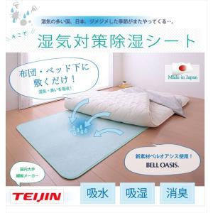 帝人 テイジン TEIJIN ベルオアシス BELLOASIS 日本製 除湿マット 除湿シート ダブルサイズ:130×180|rcmdse|02