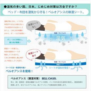 帝人 テイジン TEIJIN ベルオアシス BELLOASIS 日本製 除湿マット 除湿シート ダブルサイズ:130×180|rcmdse|03