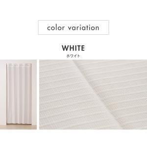 間仕切りカーテン 幅100cm テイジン エコリエ使用 パタパタ 遮熱 保温 遮像 UVカット つっぱり式 カーテン のれん|rcmdse|02