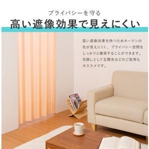 間仕切りカーテン 幅100cm テイジン エコリエ使用 パタパタ 遮熱 保温 遮像 UVカット つっぱり式 カーテン のれん|rcmdse|13