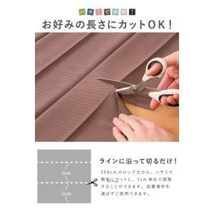 間仕切りカーテン 幅100cm テイジン エコリエ使用 パタパタ 遮熱 保温 遮像 UVカット つっぱり式 カーテン のれん|rcmdse|15