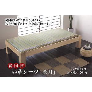 純国産 い草のシーツ(寝ござ) 『葉月』 ブルー シングル約88×180cm|rcmdse