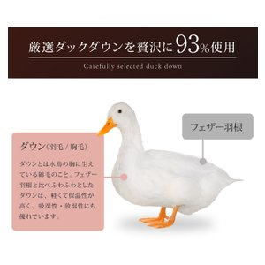 羽毛布団 クイーン プレミアムゴールド 日本製 国産|rcmdse|05