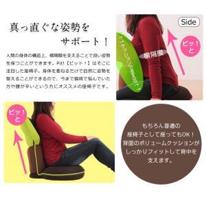 座椅子 抱き座椅子 座いす ストレッチ リクライニング 背中 背筋 腰 姿勢 猫背 骨盤 チェア 読書 ゲーム Pit ピット|rcmdse|05