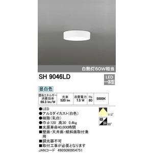 オーデリック 小型シーリングライト SH9046LD|rcmdse|02