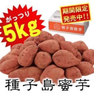 夢百笑種子島蜜芋5kg Sサイズ サツマイモ 代引不可...
