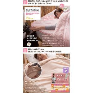 マイクロファイバー毛布 布団 マイクロファイバーぬくぬく2枚合わせ毛布 シングル (シープタッチ・マイクロファイバー毛布ボリュームタイプ・抗菌綿使用)|rcmdse|02