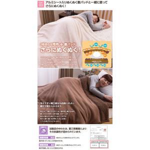 マイクロファイバー毛布 布団 マイクロファイバーぬくぬく2枚合わせ毛布 シングル (シープタッチ・マイクロファイバー毛布ボリュームタイプ・抗菌綿使用)|rcmdse|03