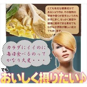 SmilS おいしいショウガ とろとろスープ 日本製  Sm...