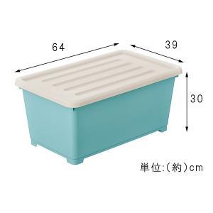 収納ボックス カラーピアンタ 奥行64cm 深型 3個組 プラスチック収納 収納ケース 収納BOX プラスチック 3個セット ピアンタ64 代引不可 rcmdse 06