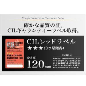 日本製 羽毛布団 キング 掛けふとん CILレッドラベル ユーラシアダックダウン 羽毛のためのアレルGプラス 3年保証|rcmdse|05