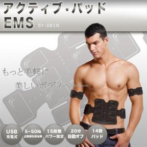 EMS 腹筋ベルト SY-081 アクティブ14パット Body Fit 2 ボディフィット2 アクティブパッド 15段階パワー 男女兼用 充電式|rcmdse