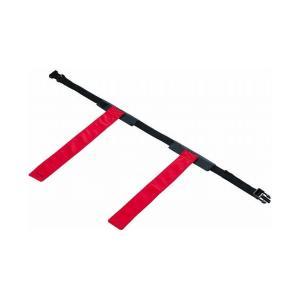 エバニュー Evernew EVERNEWボール運動用フラッグ ETE199 カラー 赤 rcmdsp