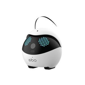 ペット用 スマートロボット Ebo (イーボ) 標準版|rct-one