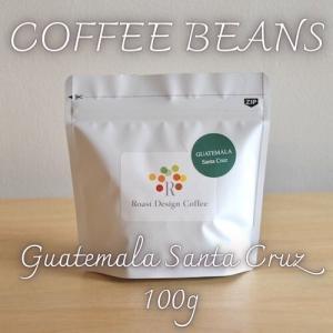 自家焙煎 コーヒー豆 グアテマラ アンティグア サンタクルス 農園 100g|rdc