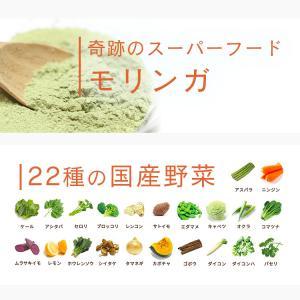 しっかり習慣プレミアム サプリメント 生活習慣 栄養管理 モリンガ×ツバメの巣 無農薬 国産野菜 美容サプリ 約1ヶ月分|re-eregant|11