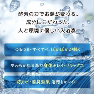 REウォーター 入浴液(家庭用1000ml)【...の詳細画像1