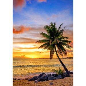 絵画風 壁紙ポスター  ビーチ 朝陽とヤシの木 カリブ海の日の出 海 キャラクロ BCH-030A1 (A1版 585mm×830mm) real-inter