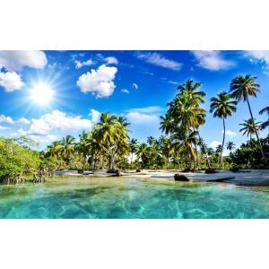 絵画風 壁紙ポスター  椰子のビーチ バリ島 ヤシの木と眩しい太陽 海 キャラクロ BCH-039W1 (ワイド版 921mm×576mm) real-inter