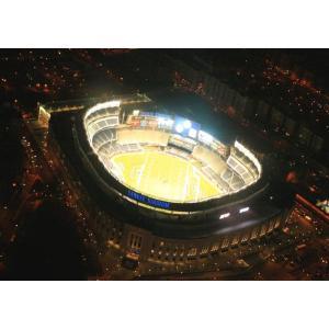 絵画風 壁紙ポスター  ヤンキー・スタジアム 夜景 MLB ニューヨーク・ヤンキース MLS ニューヨーク・シティFC キャラクロ BNYY-001A2 (A2版 594mm×420mm) real-inter