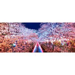 絵画風 壁紙ポスター  -地球の撮り方- 輝く川面、東京都目黒川の夜桜ライトアップ さくら 桜 パノラマ 絶景スポット C-ZJP-008P1 (パノラマ版 1440mm×576mm)|real-inter