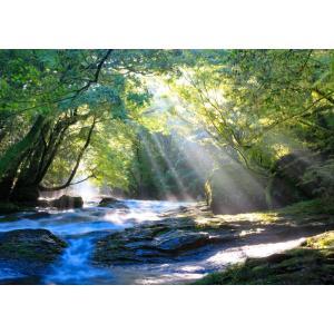 絵画風 壁紙ポスター  -地球の撮り方- 光のシャワーと美味しい水の水源、菊池渓谷の絶景 熊本県菊池市 C-ZJP-021A2 (A2版 594mm×420mm)|real-inter