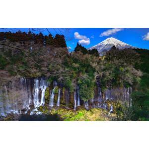 絵画風 壁紙ポスター  -地球の撮り方- 流れ落ちる絹糸、富士宮の白糸の滝と富士山の絶景 日本の絶景 キャラクロ C-ZJP-063W2 (ワイド版 603mm×376mm)|real-inter